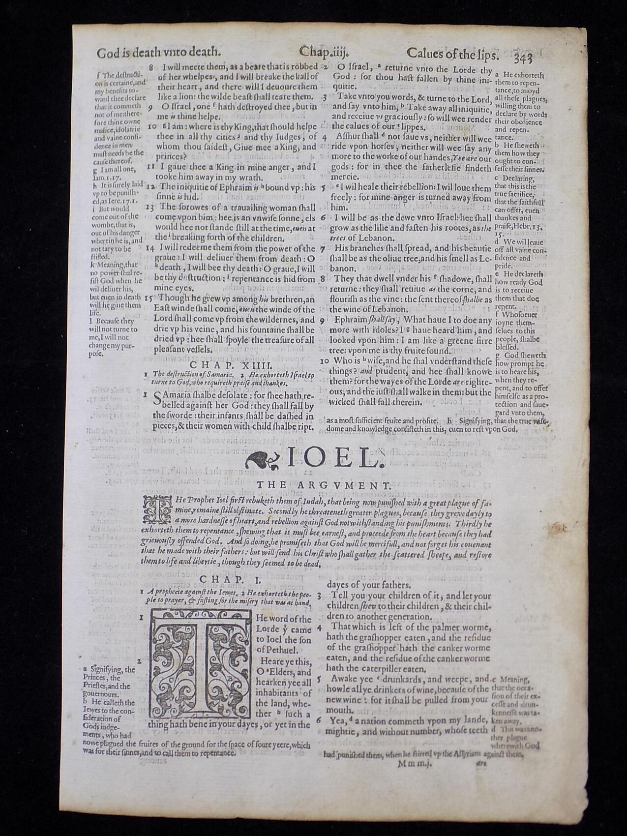 Geneva Bible Leaves Authentic Elizabethan Era