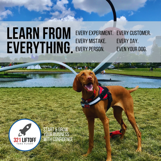 3 Simple Business Tactics That I Learned From My Dog | 321 Liftoff