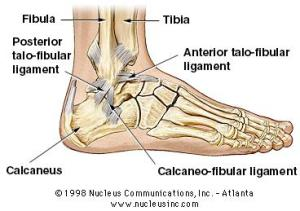 ankle-injury