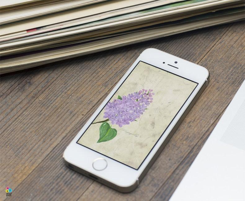 Wiosenne tapety na telefon z bzem