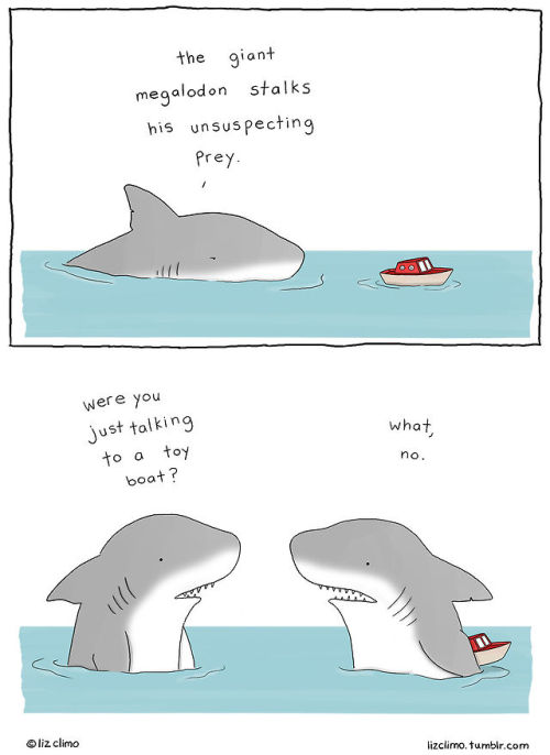 Illustration art funny animals artists on tumblr LizClimo