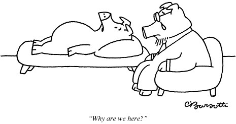 New Yorker Cartoons Explained