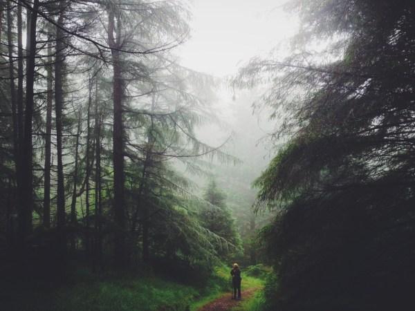 Landscape Nature Photography Tumblr