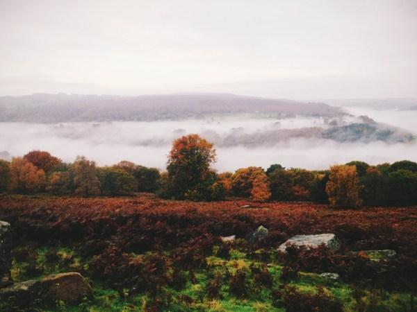 Landscape Nature Artists Vsco Lensblr Original