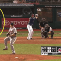 Flashing behind home plate reanimators