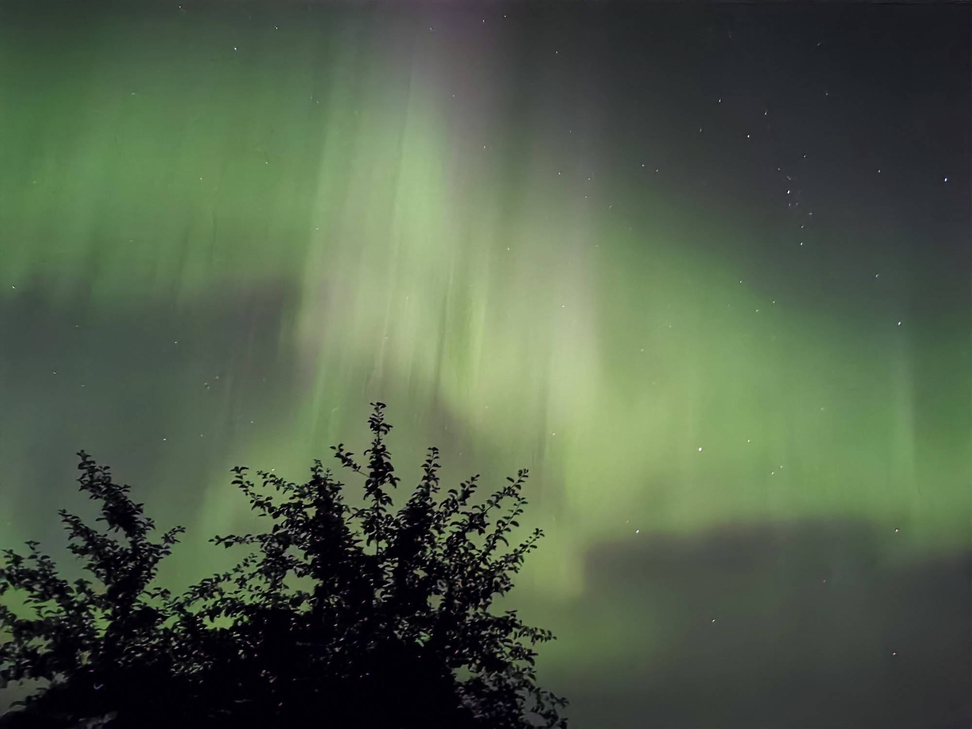 northern lights visible for
