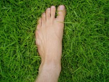 Grounding Walking Barefoot