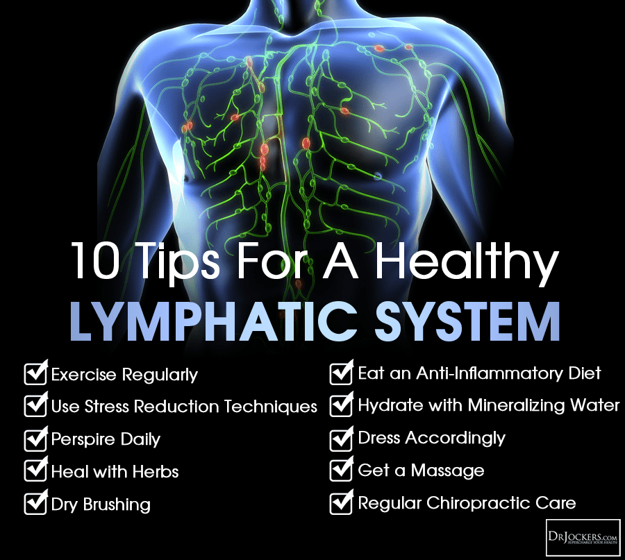 lymph circulation diagram usb to ps2 controller wiring 10 ways improve your lymphatic system - drjockers.com