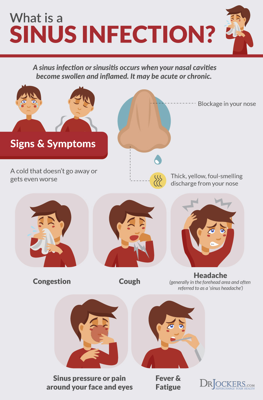 medium resolution of sinus infection top 8 sinus infection natural remedies