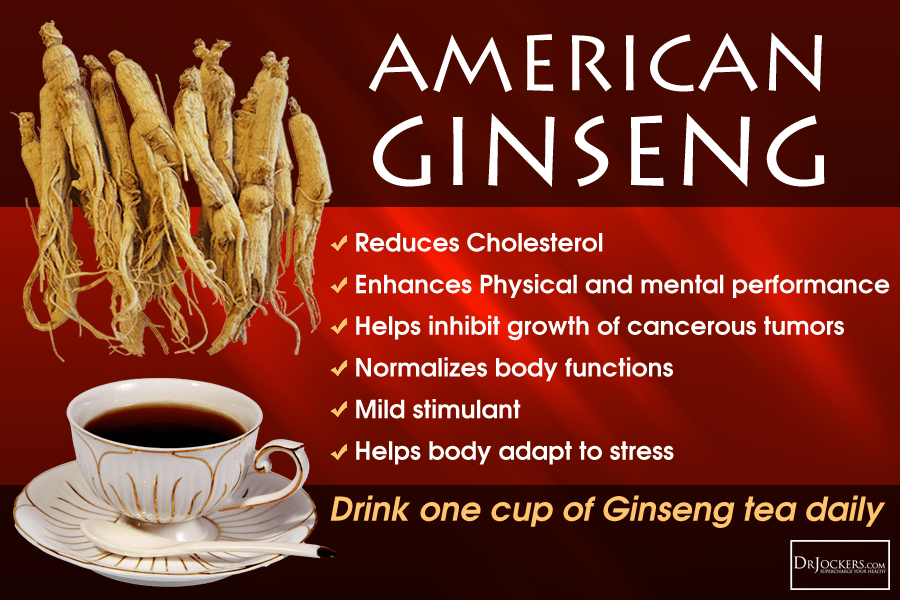 Image Result For Ginseng Root What Is It Good For
