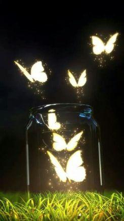 Pukotina i svjetlo, zaljubljeni par - naputak o sreći