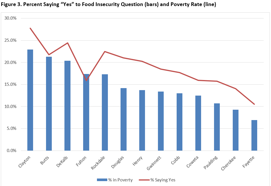 metro Atlanta speaks food insecurity