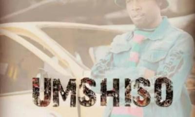 Kwiish SA & DJ Phat Cat – Ka Painelwa ft. Steven Lee Lewis [Download Mp3]