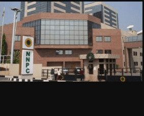 FG to expand national grid size, leverage hubs for gas pricing