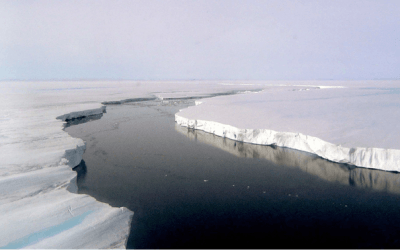 Massive Larsen Ice Shelf Predicted to Break Soon