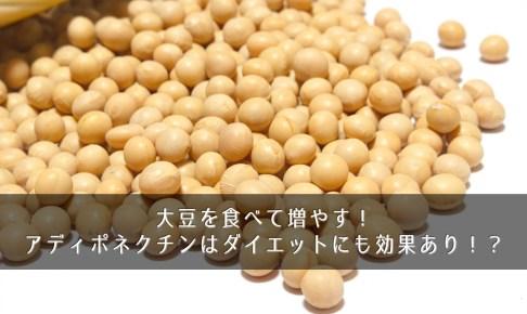 大豆を食べて増やす!アディポネクチンはダイエットにも効果あり!?