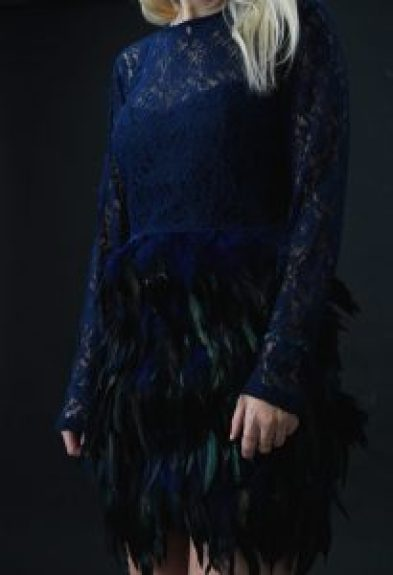 Dezzal Lace and Feathers Dress 35mminstyle