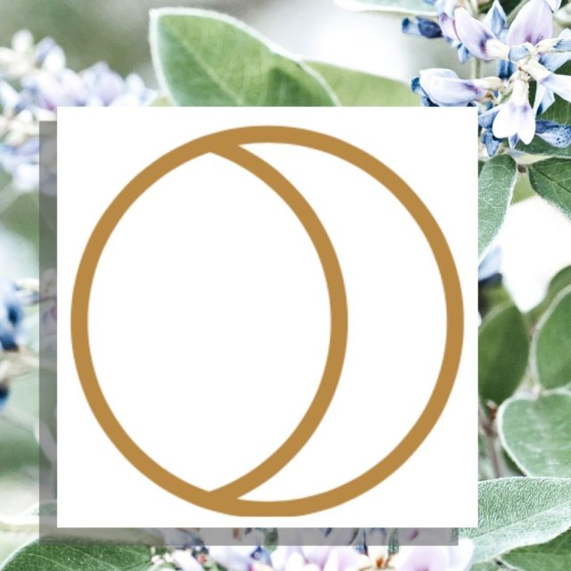 """Both physical and environmental stressors disrupt our body's natural circadian rhythm, which actually has a direct impact on skin and can leave it looking tired and dull. Enter Korean bush clover: a restorative ingredient in our OTG-7 Complex that acts like a good night's sleep for skin, with proteins that strengthen cell metabolism, balance out complexion, and bring you one step closer to achieving that ever-elusive """"why yes, I am in fact always well-rested"""" glow."""
