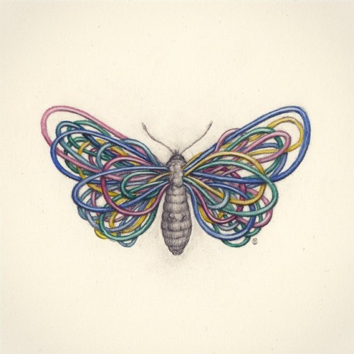 Another butterfly. Watercolour and graphite on paper [Sold]  #art #illustration #butterfly #insects #surreal