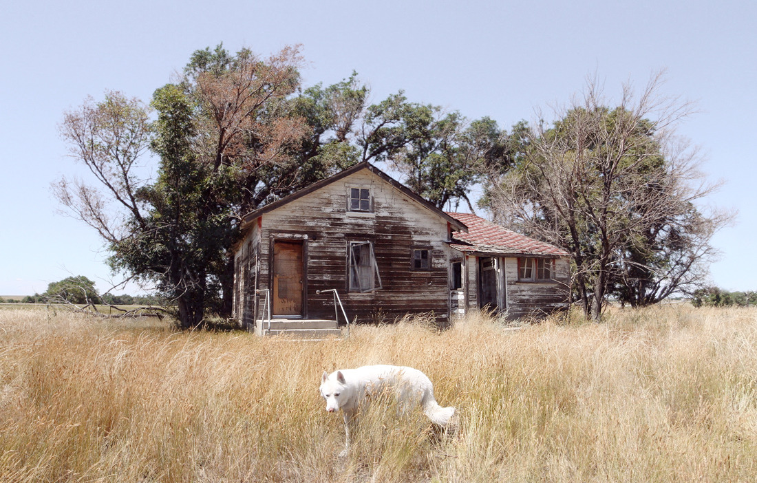 Abandoned homestead east of Denver, Colorado / August 2015