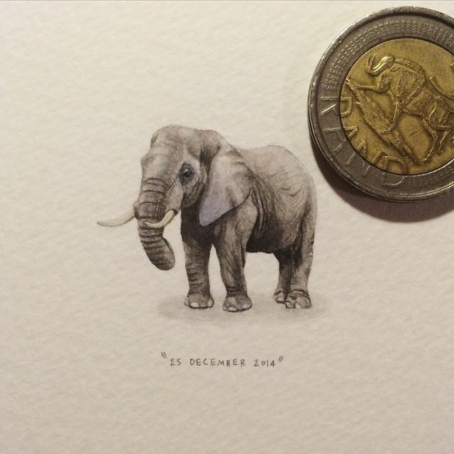 Day 359 : African Elephant | Loxodonto africana. 🐘 (remember the days when the Boswell-Wilkie circus would come to town over Christmas time?) 25 x 29 mm. #365postcardsforants #wdc624 #miniature #watercolour #elephant #painting #christmas #circus Disclaimer: this does not mean I endorse the use (and abuse) of animals in circuses AT ALL.