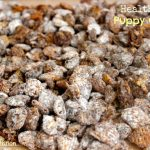Healthier Puppy Chow 360 Family Nutrition