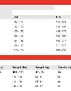 Speedo size chart also wetsuit charts for all known brands guide rh guidefo