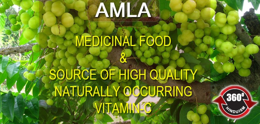 Medicinal Food & Source of High Quality VITAMIN C