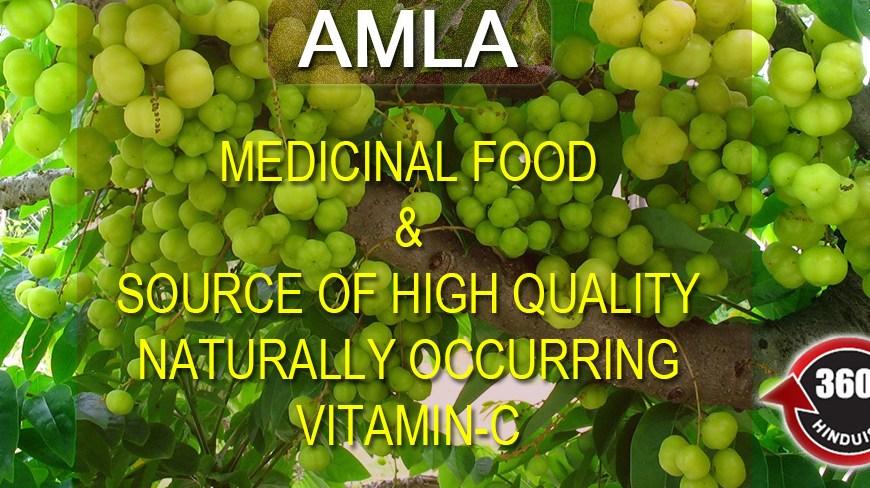 Medicinal Food & Source of High Quality VITAMIN C