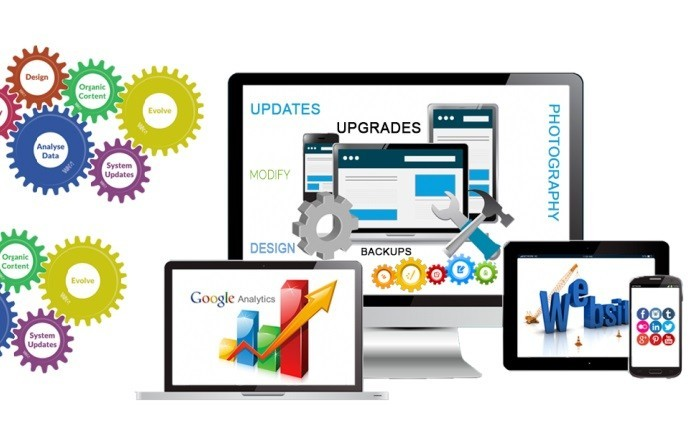 website-management-360Hub Services