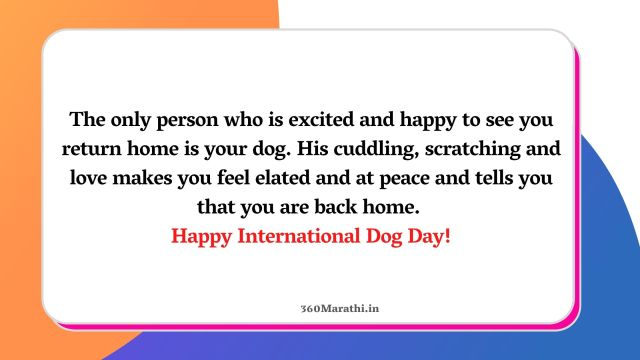 International Dog Day Quotes 3 1 -