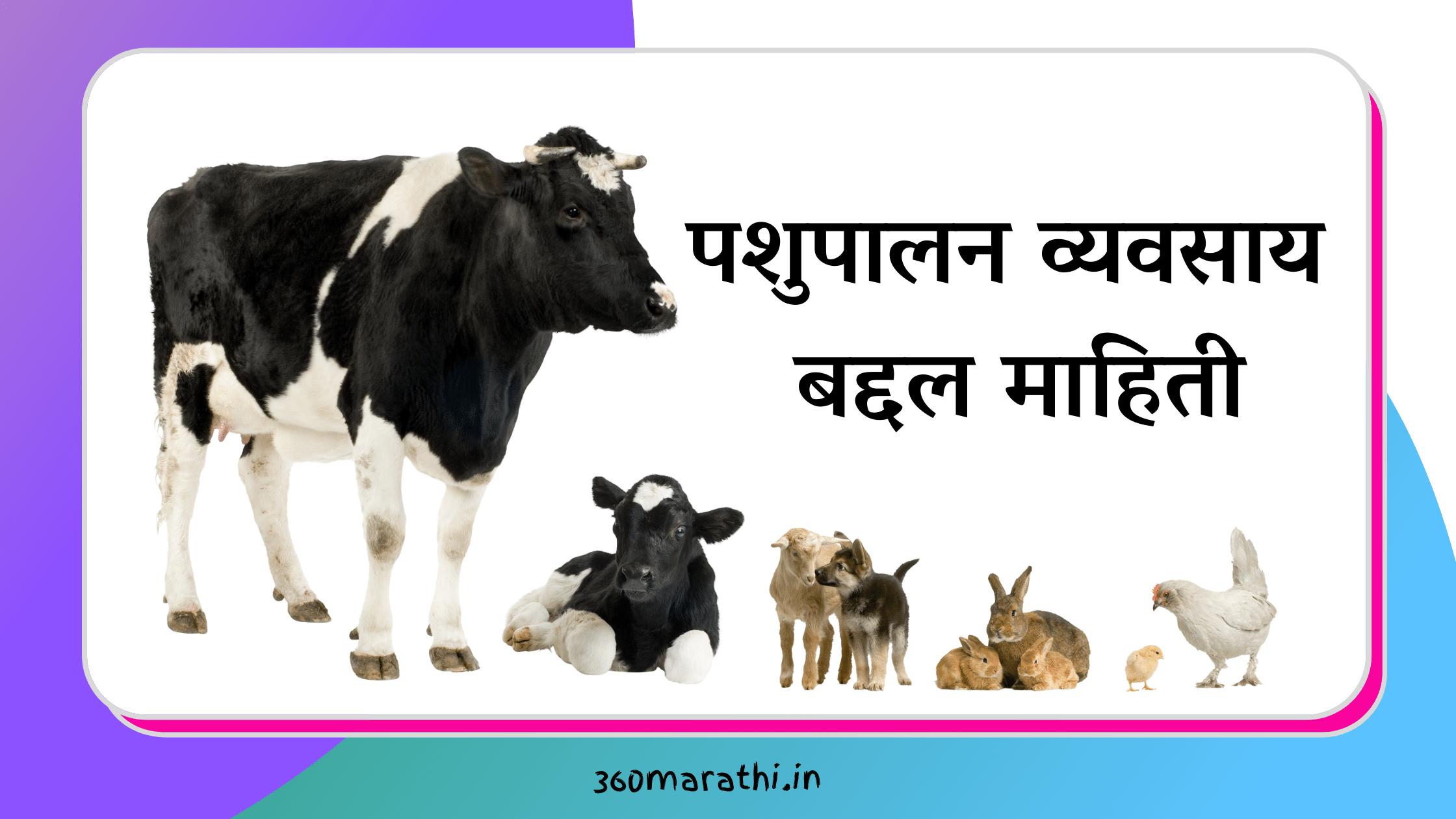 पशुपालन व्यवसाय मराठी माहिती   Pashupalan Information in Marathi