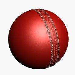क्रिकेट खेळाची माहिती मराठी   Information about cricket in Marathi
