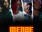 Poundz Flako - Mende Art @360media01