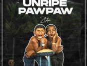 Download Zlatan Unripe Pawpaw Mp3 Download