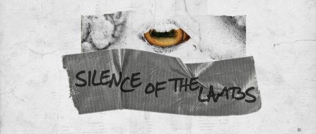 Download Ludacris Ft Lil Wayne Silence of the Lambs MP3 Download