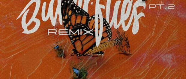 Download Queen Naija Butterflies Pt 2 (Remix) ft Wale MP3 Download