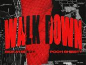 Download BigKayBeezy Ft Pooh Shiesty Walk Down Mp3 Download