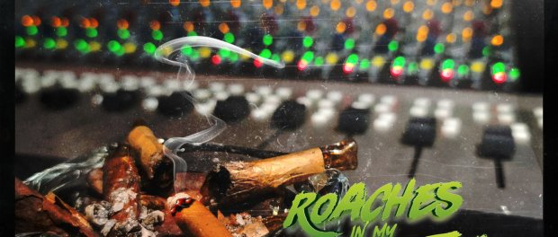 Download Snoop Dogg Ft Prohoezak Roaches In My Ashtray Mp3 Download