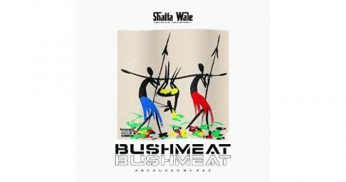Download Shatta Wale Bushmeat MP3 Download