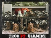 Download Trod Shey You Fit Go ft Olamide MP3 Download