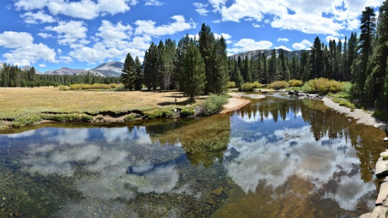 Tuolumne River, looking toward Lyell canyon