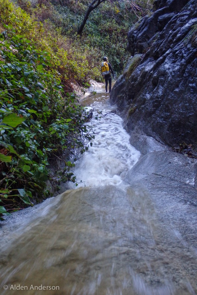 The water is flowing! (A Storm, 4 Days — 4 Canyons Part 1 of 2)