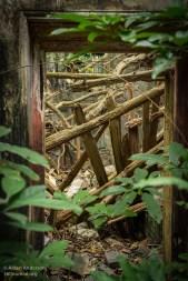Yim Tin Tsai Doorway