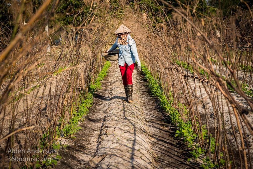 Minh Farmer Hoi An, Vietnam