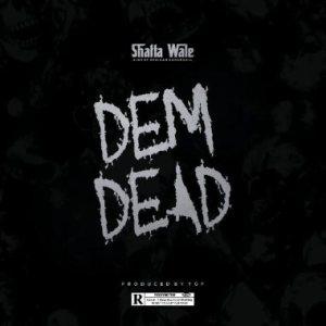 , MUSIC: Shatta Wale – Dem Dead, 360okay