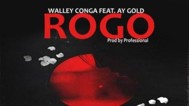 Walley Conga Ft. Ay Gold – Rogo, MUSIC: Walley Conga Ft. Ay Gold – Rogo, 360okay