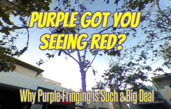 Purple fringing