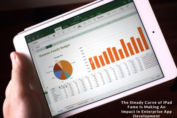 steady fame of ipad app development