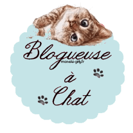 blogchat